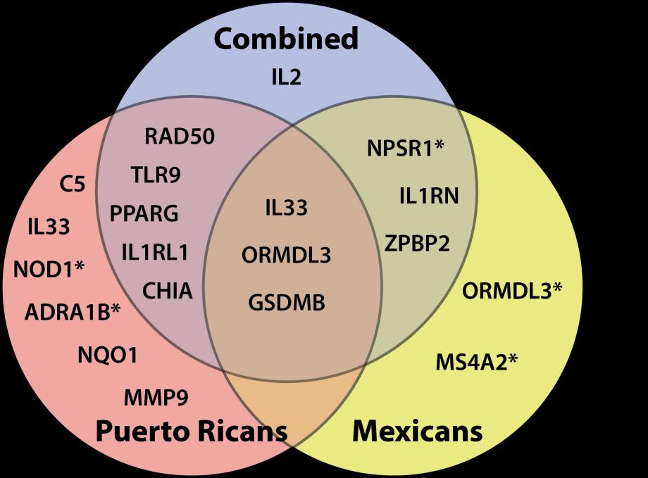 replication venn diagram
