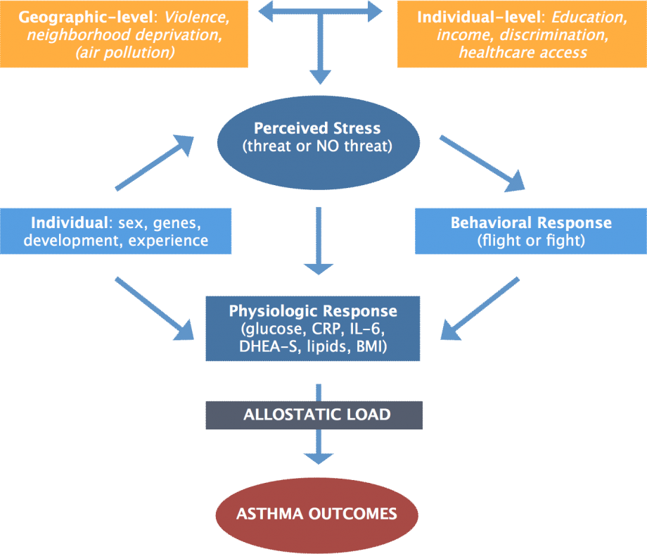 download regenerative medicine ii clinical and preclinical applications 2005