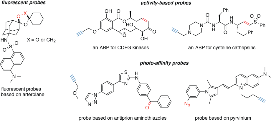 chemical probes