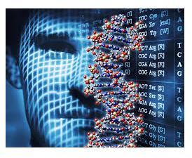 Man and DNA sequence photo