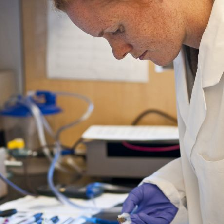 post-doc laboratory
