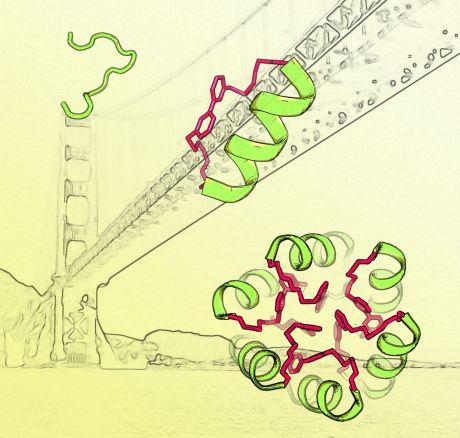 molecule and Golden Gate Bridge collage