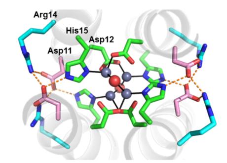 closeup of molecule