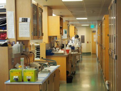 lab workspaces