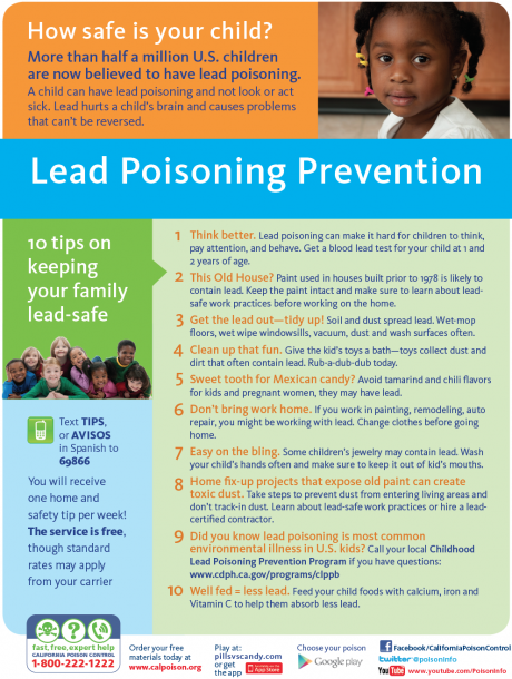 lead poisoning prevention PDF