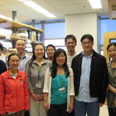 group in lab