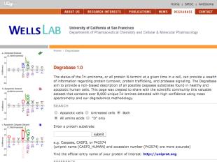 Degrabase screenshot